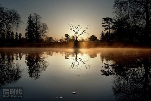 一棵死去的树 Kevin Day